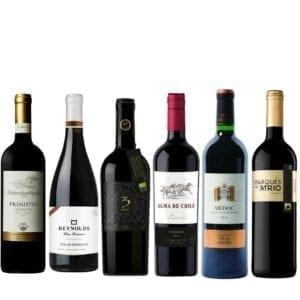 big and bold wine bundle